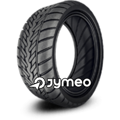 Neumáticos TRISTAR ICE-PLUS S210