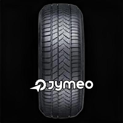 SUNNY Wintermax Nw211 dæk